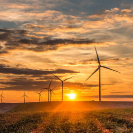 sunset at windfarm in France