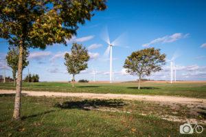 éoliennes etfeuilles d'arbres animés par le vent