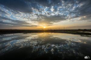 Aurore-et-parcs-éoliens-en-Picardie